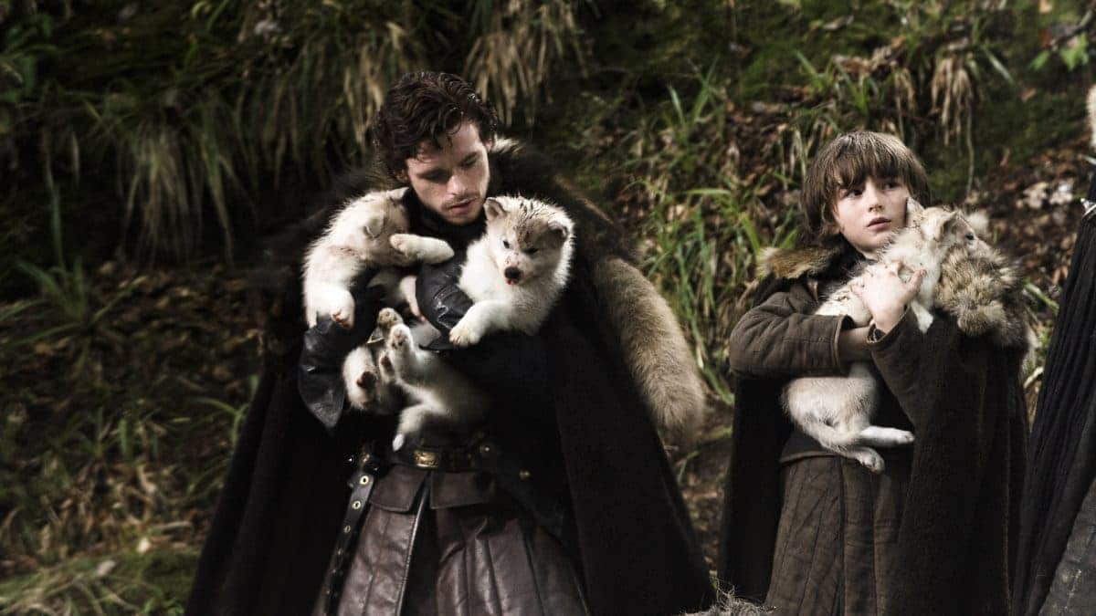 The other siblings: Robb and Bran