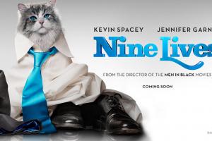 THE CAT SAVED ME: How <i>Nine Lives</i> the Movie Saved My Life