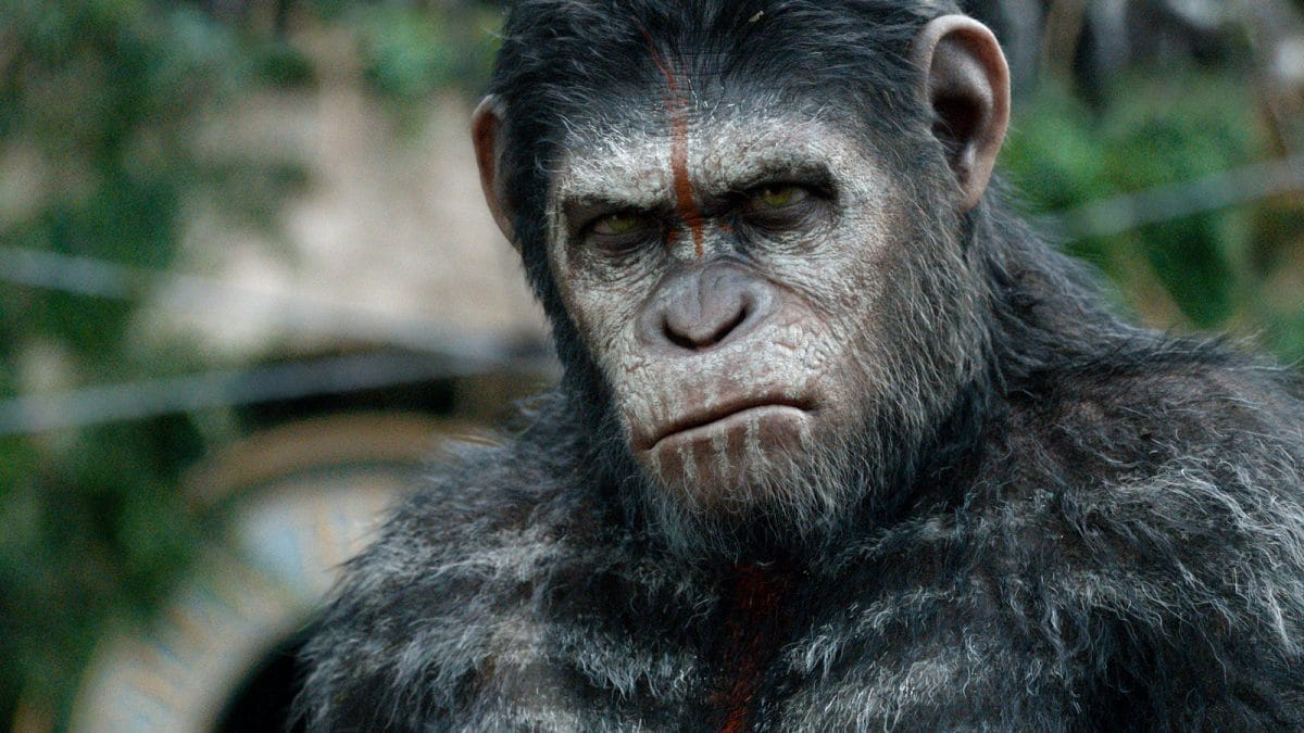 Caesar, played by Andy Serkis, is tasked with leading the apes toward a good future.