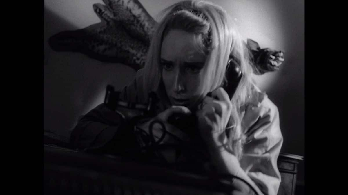 Barbara attempts to call for help on a dead phone.