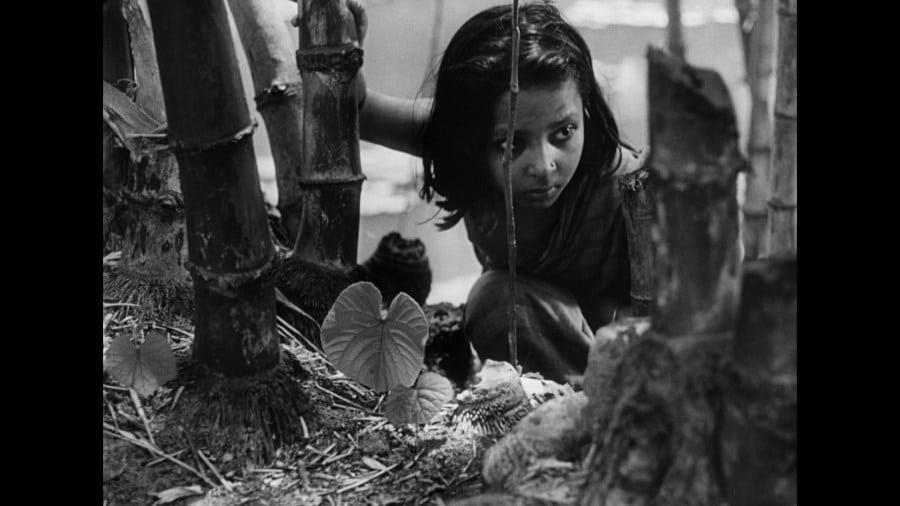 Young Durga steals fruits